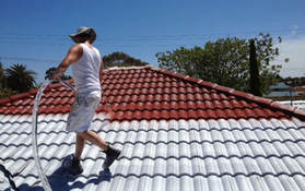 Roof Painting